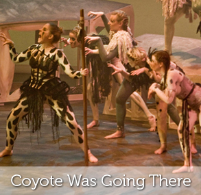 Coyote Was Going There